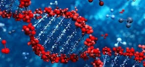 Viral Vector and Plasmid DNA Manufacturing has gained significant traction with a growing focus on vaccine development for different viruses